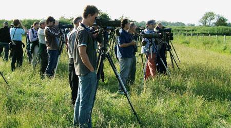 spotting-scopes スポッティングスコープ 野鳥